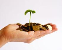 Zapomeňte na zlato: Podivné věci, do kterých si lidé ukládají své bohatství